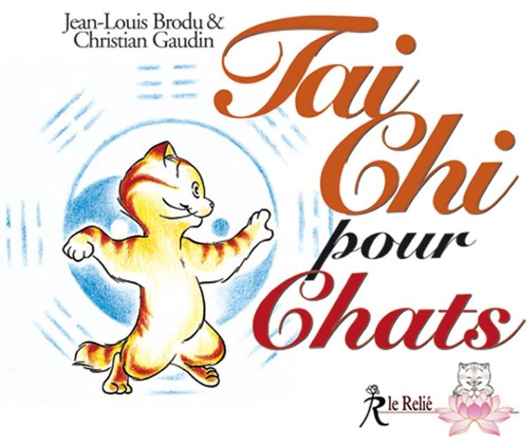 Chat taichi